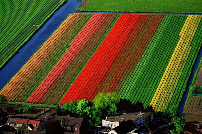 Amsterdam Region, Netherlands