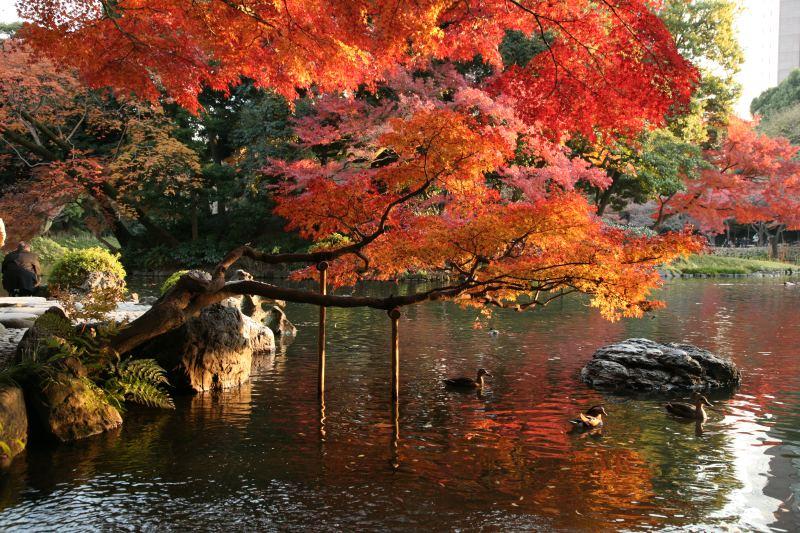 www.japan-guide.com/e/e3034_003.html