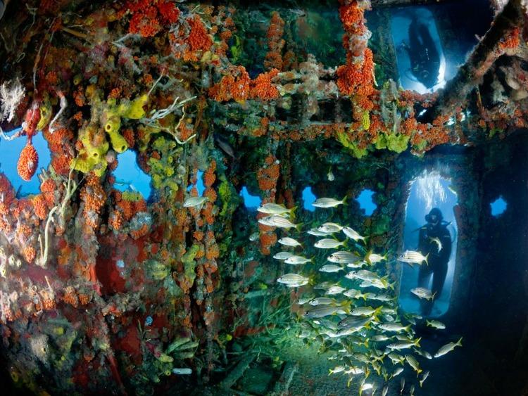 sunken-ship-florida_32766_990x742