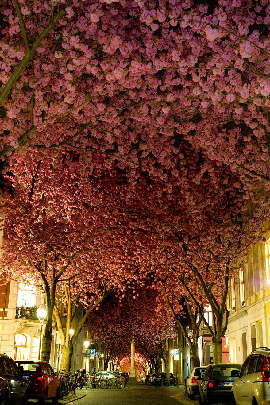 Bonn street, Germany