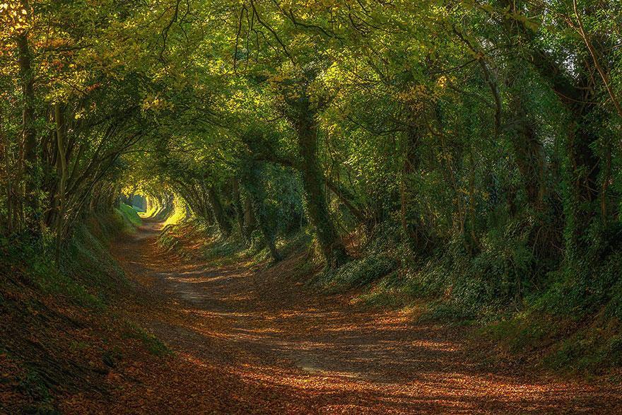 Sussex, U.K.