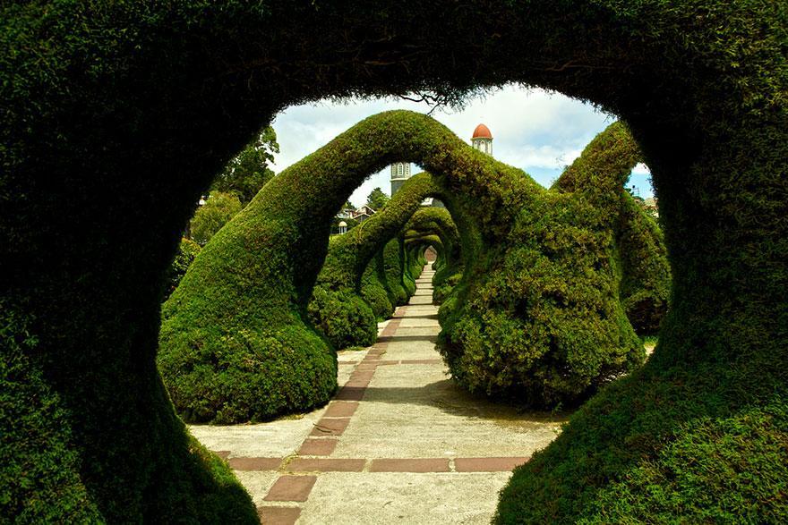 Francisco Alvarado Parque, Costa Rica