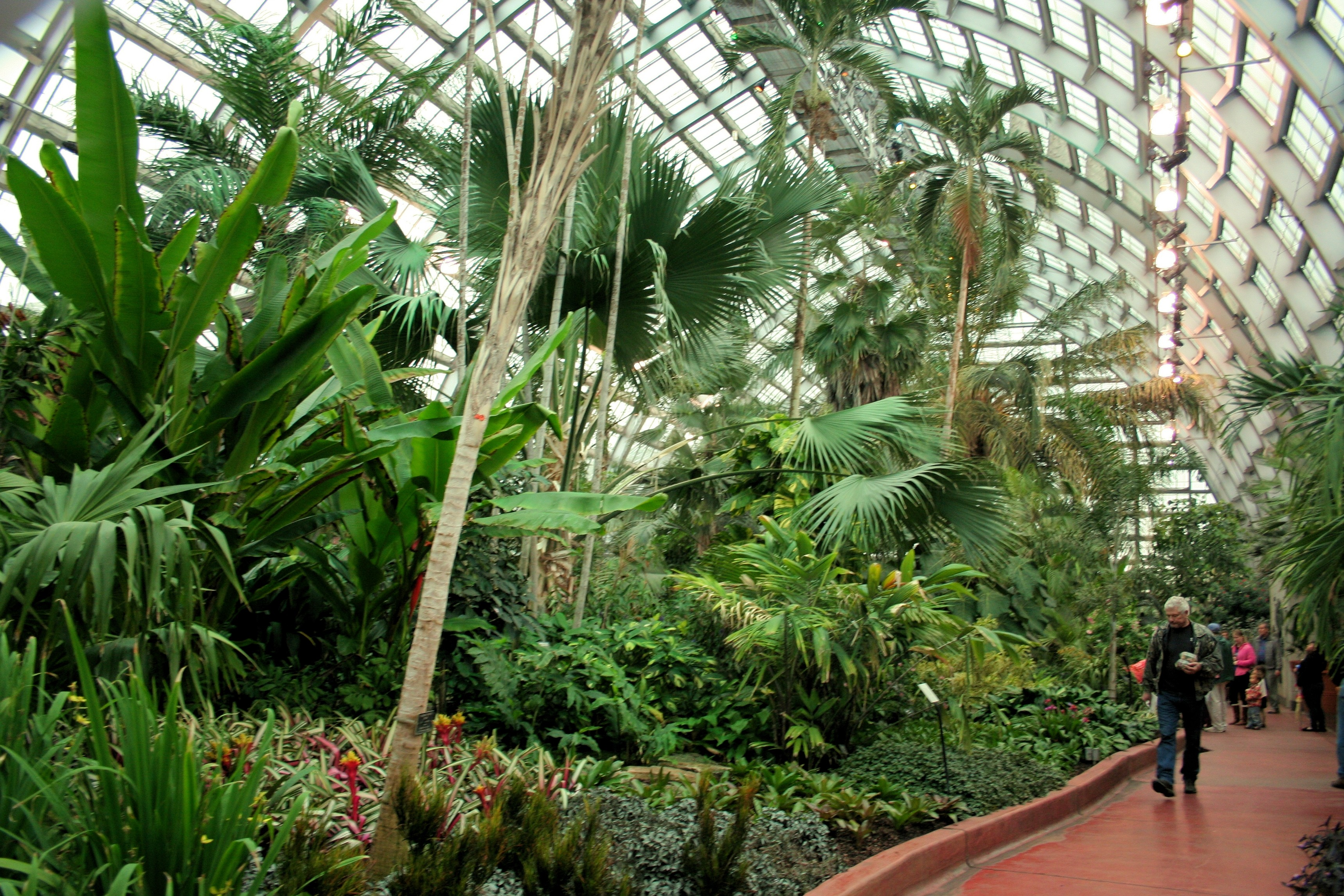 Garden Chicago: Garfield Park Conservatory: The Green Lung Of Chicago