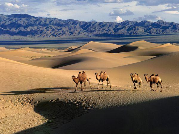 Gobi-desert 1