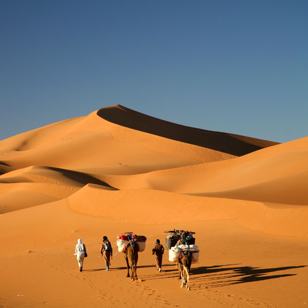 Jeep Sahara 2014 >> The Deserts of the World - The Golden Scope