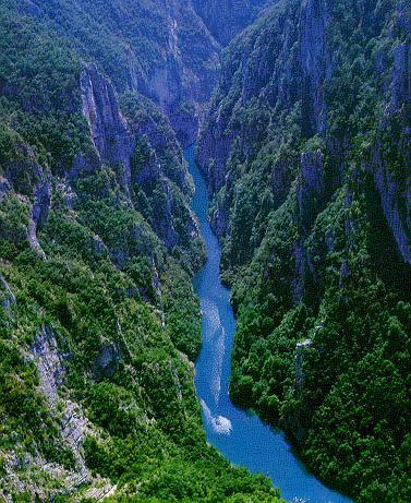 Tara River Canyon, Montenegro 1