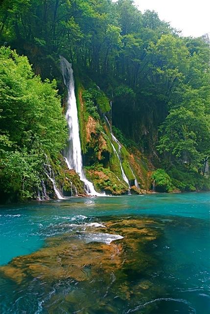 Tara River Canyon, Montenegro 5