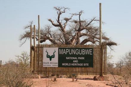 mapungubwe national park 1