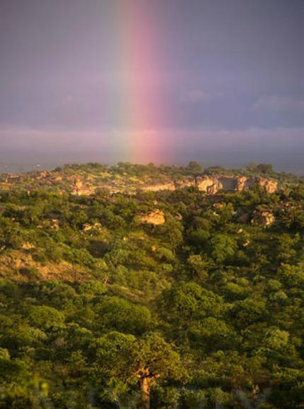 mapungubwe national park 9 tagliare resize