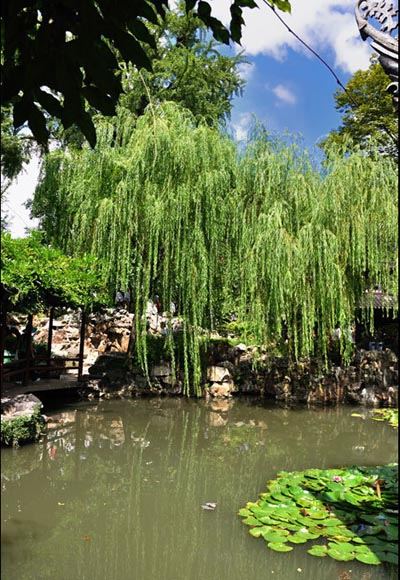 suzhou 11