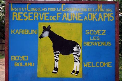 okapi 1 res