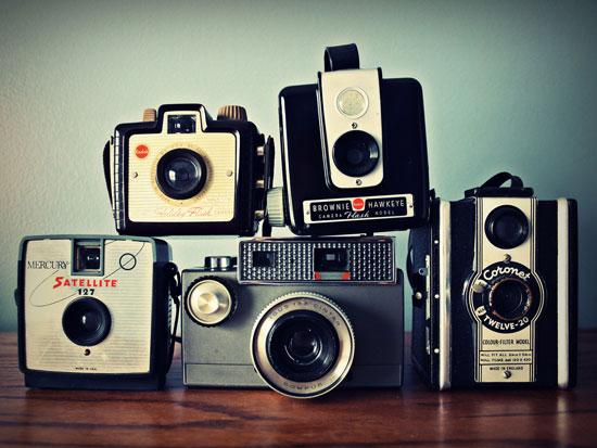 vintage-cameras-cabinet-of-curiosities