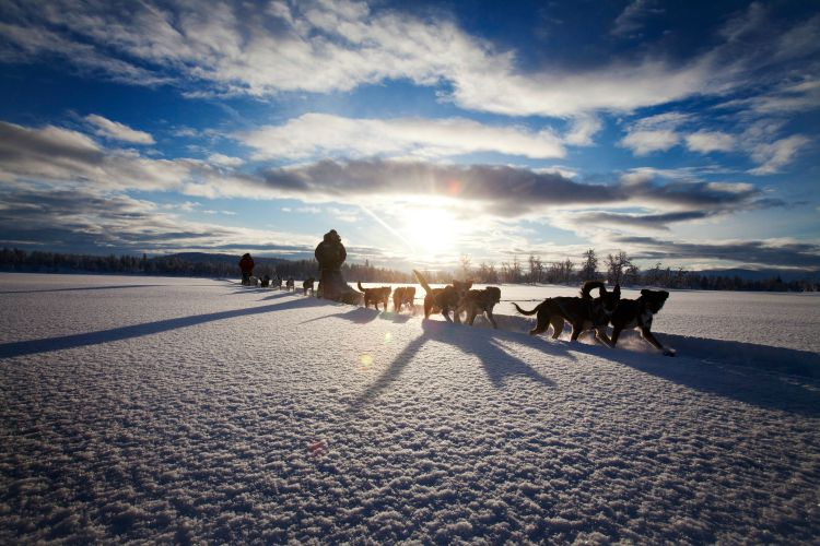 Ecotourism attractions in Sweden