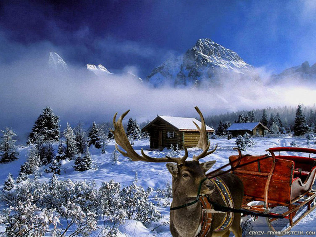 8589130430084 Christmas Winter Scenes Wallpaper