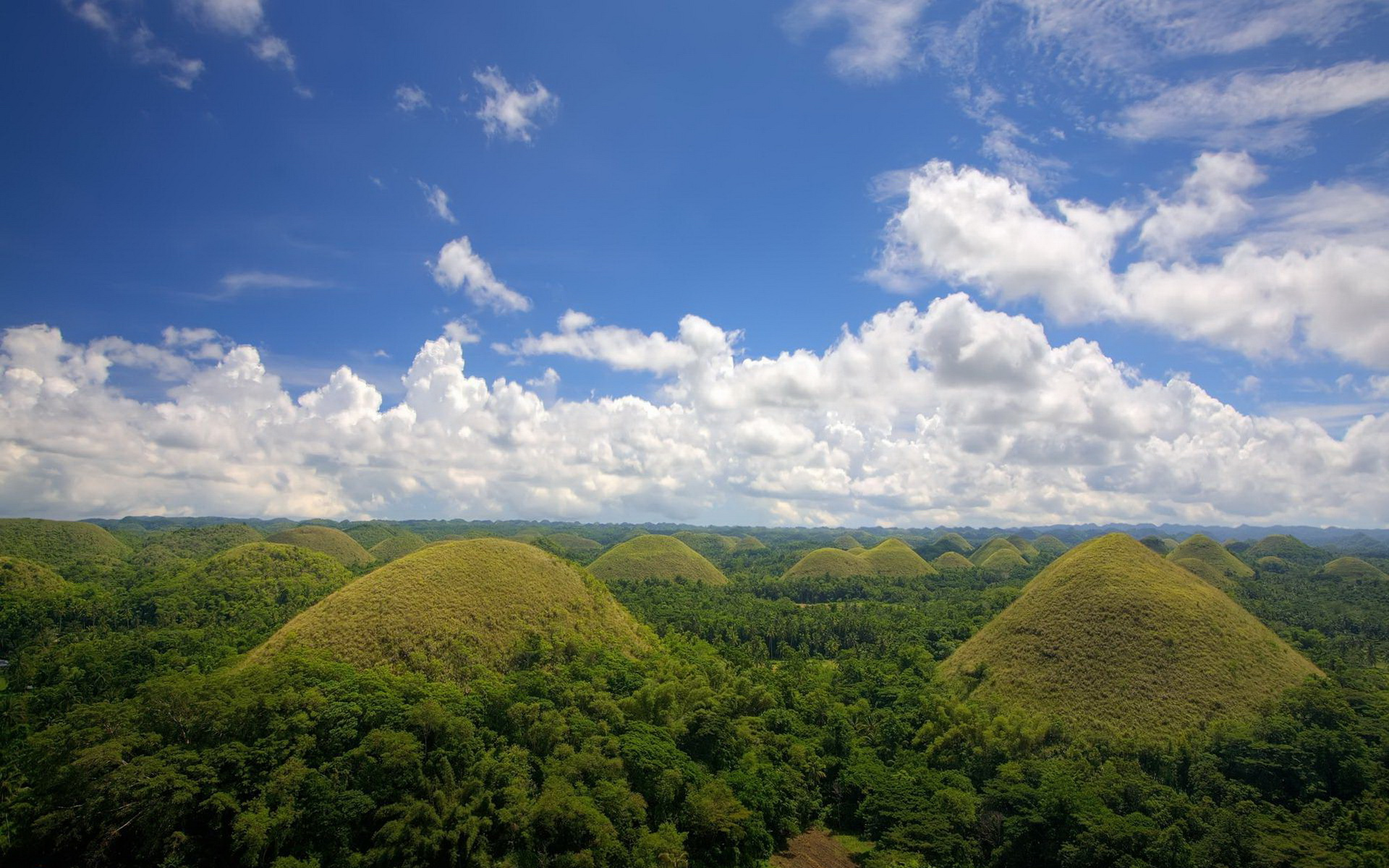 Chocolate Hills Of Bohol Philippines The Golden Scope