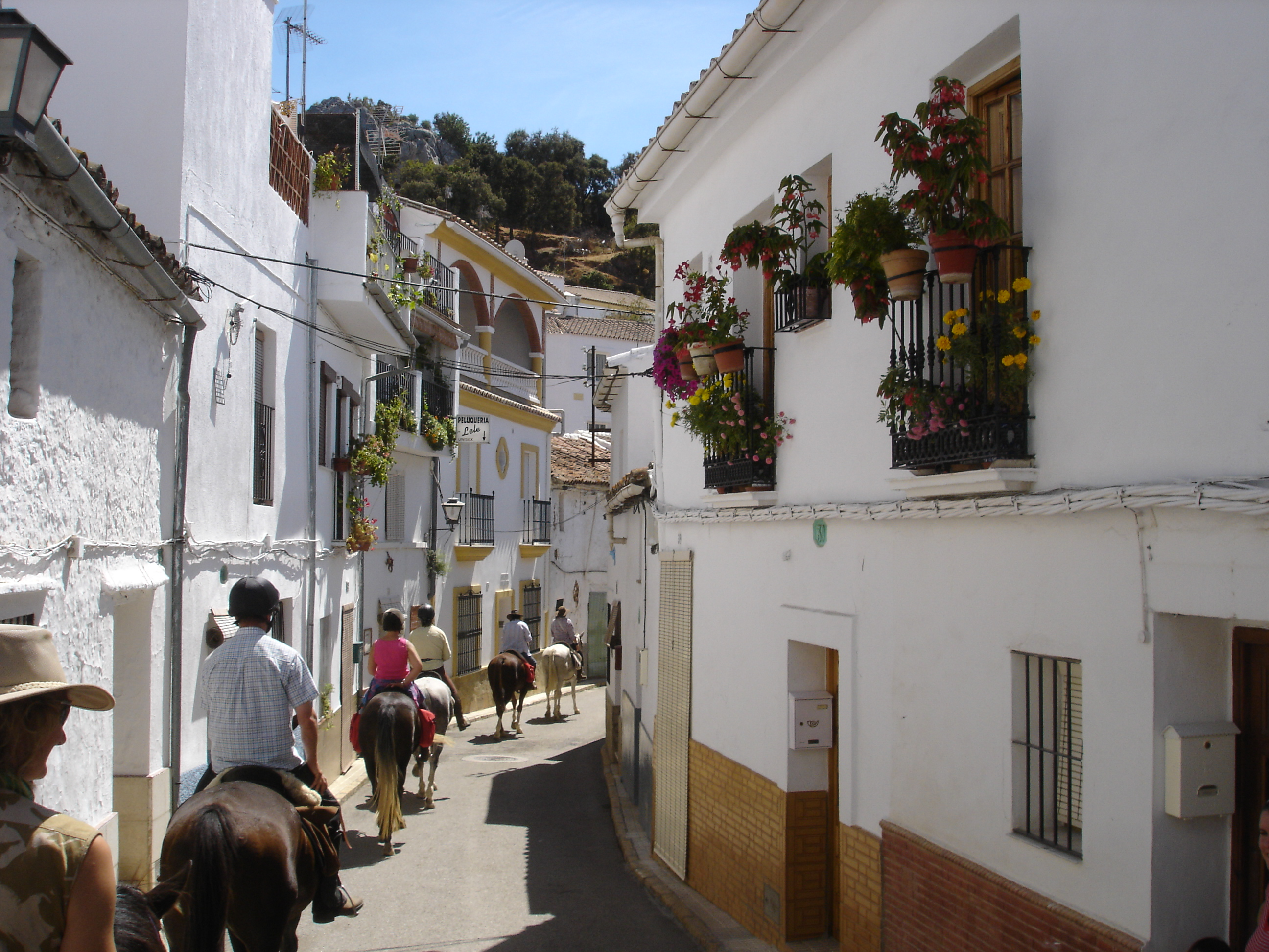 Gaucin Spain  City pictures : Gaucin Andalucia SPAIN. horse riding Ride Andalucia | The Golden Scope