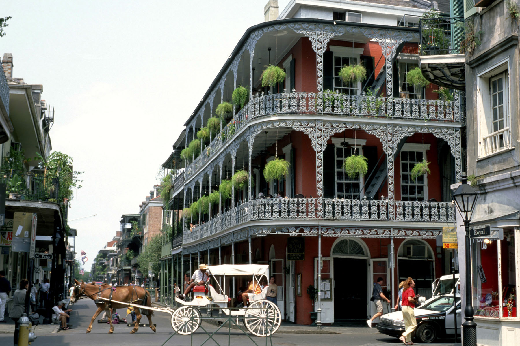 Discovering New Orleans