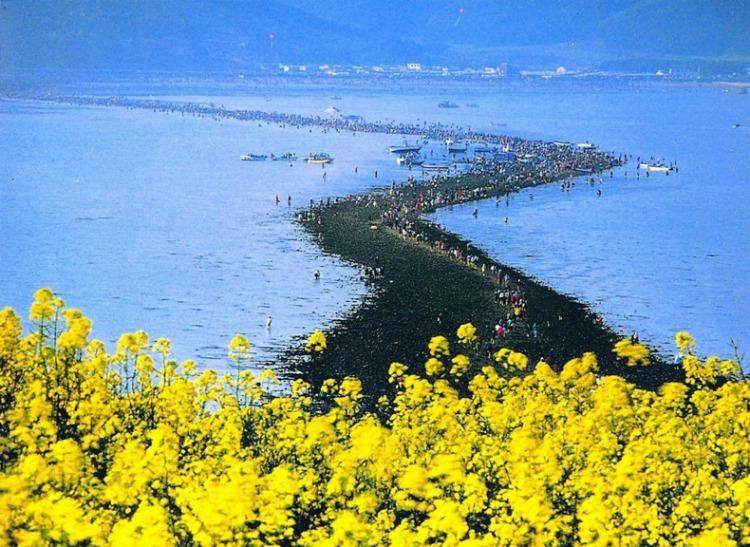 """Il """"miracolo"""" del mare di Jindo"""