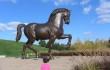 0 copertina mercoledi s horse