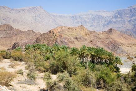 Oman Amazing Holiday Arabia The Golden Scope