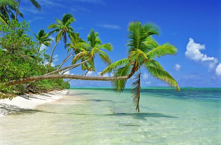 Tonga, l'ultimo regno polinesiano