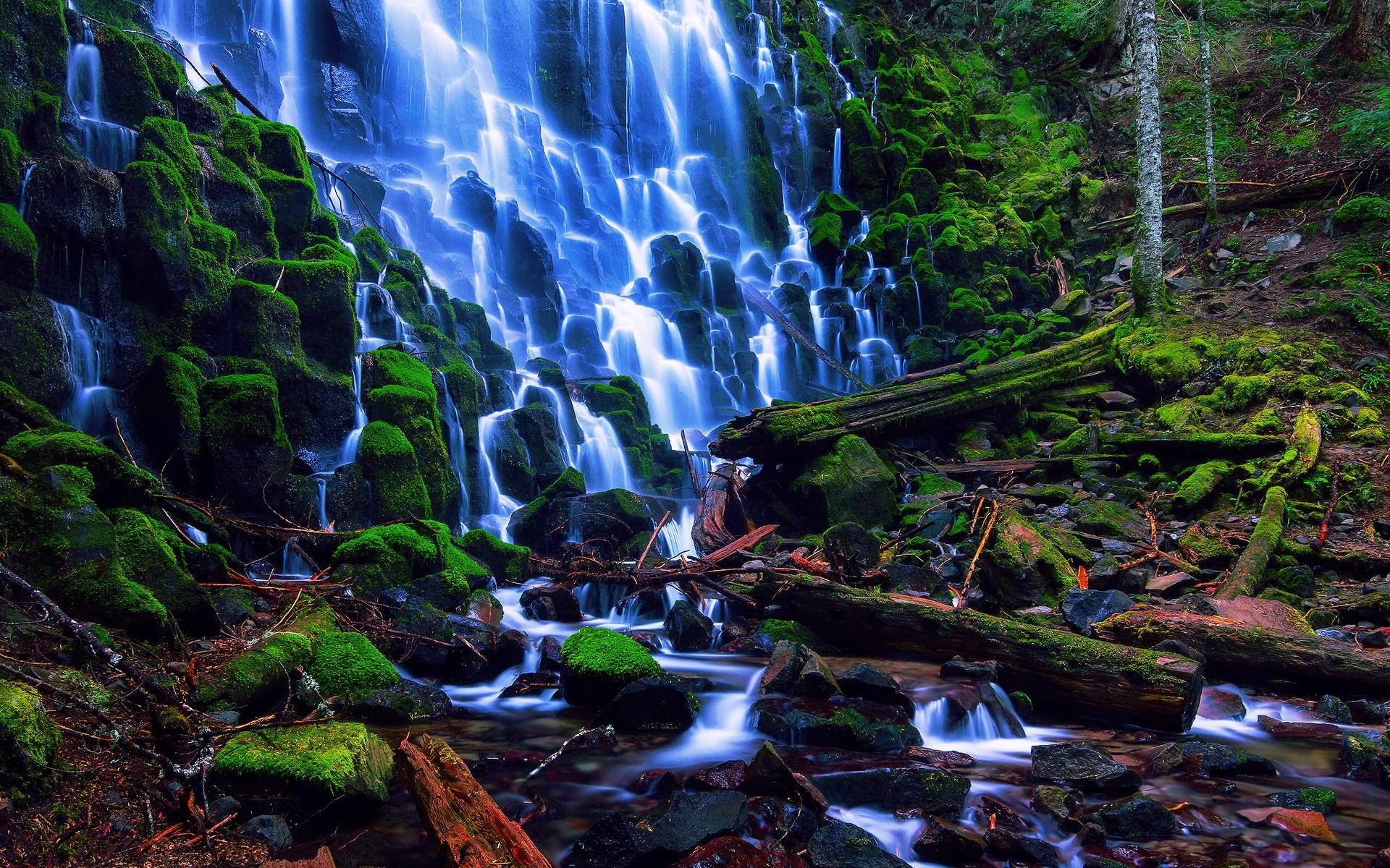 Portland S Nature