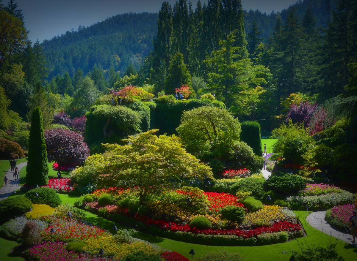 the rainbow of colors in the butchart gardens the golden scope