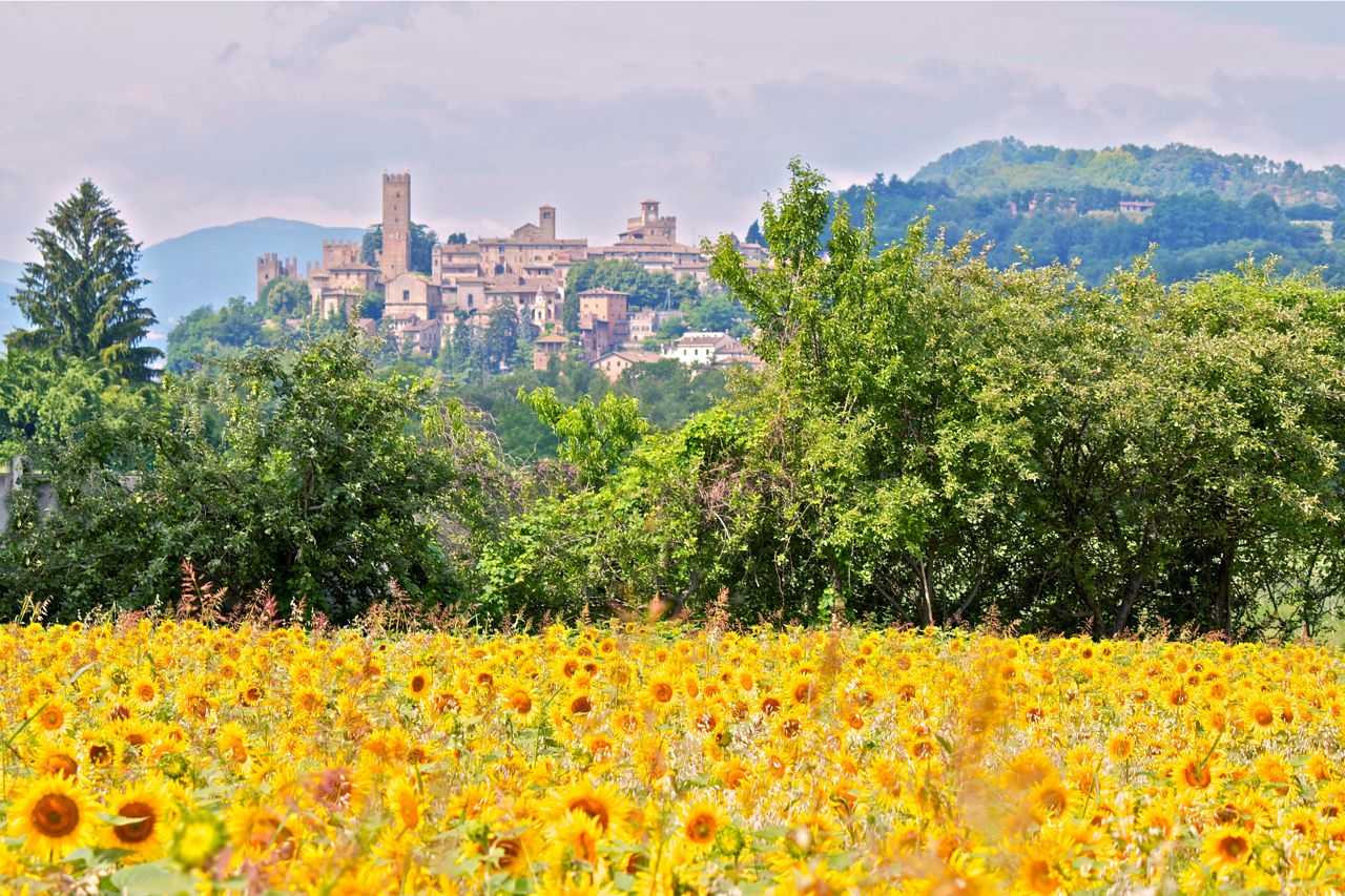 Castell'Arquato, a medieval village