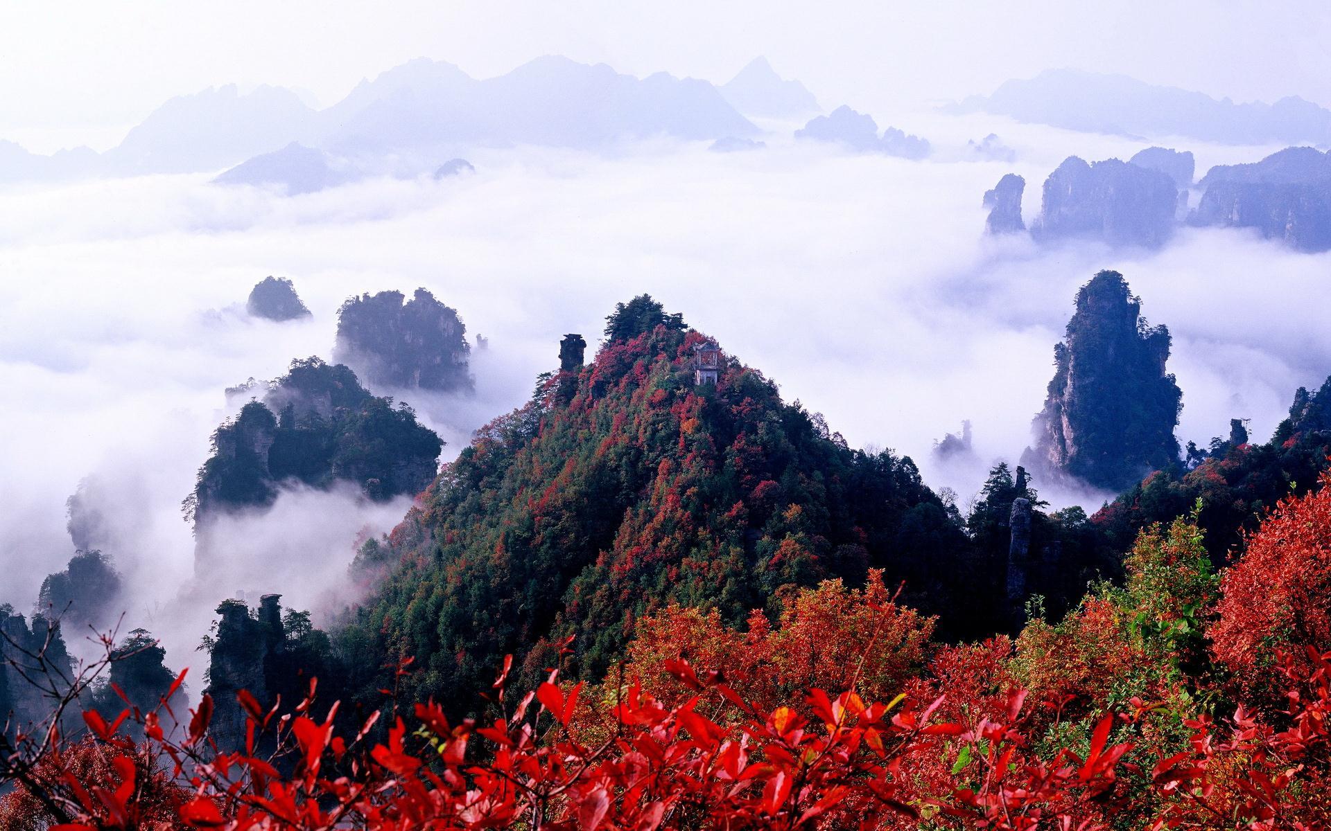 La Prefettura di Zhangjiajie