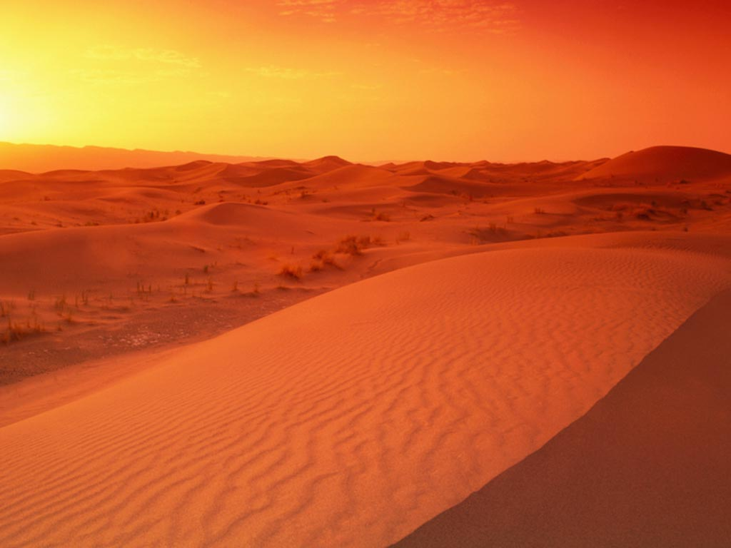 Arabian-Desert_sunrise_1024x768-Wallpaper